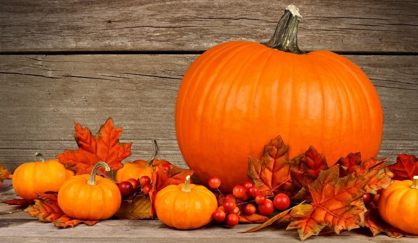The flavor of fall pumpkin jon taffer - Pumpkin wallpaper fall ...